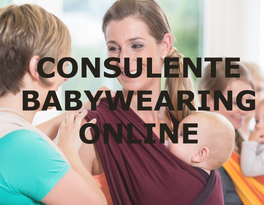 CONSULENTE BABYWEARING ONLINE